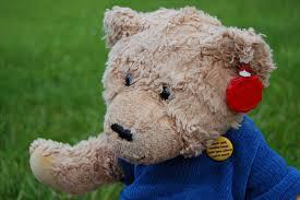 Sympathy Stuffed Bear