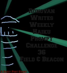ronovan-writes-haiku-challenge-36-field-beacon