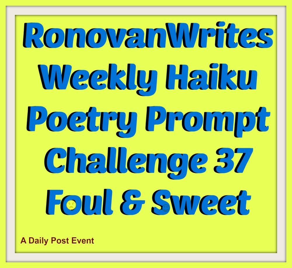 haiku title image
