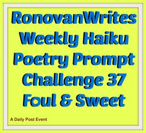 Haiku Challenge