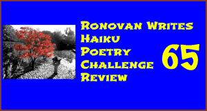 Ronovan Writes Haiku Challenge Review 65