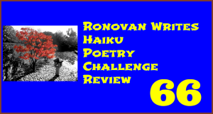 Haiku Review 66