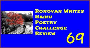 Ronovan Write Haiku Poetry Review
