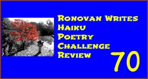 ronovan-writes-haiku-poetry-challenge-review