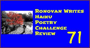 Haiku Challenge Review 71