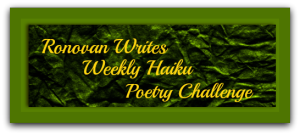 ronovan-writes-haiku-challenge-shadow