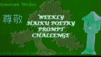 Ronovan Writes - Weekly- Haiku - Poetry Prompt- Challenge 143Chagrin & Joy