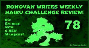 Haiku Challenge Review 78