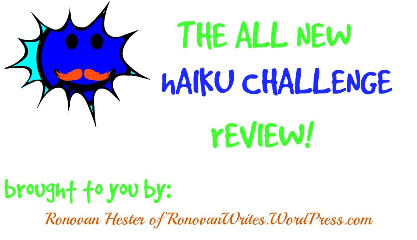 Ronovan Writes Haiku Review