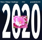 pensitivity three things challenge logo