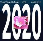 pensitivity three things challenge logo