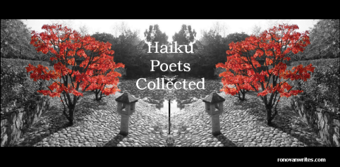 fall haiku challenge poets collected japanese maple with black and white background