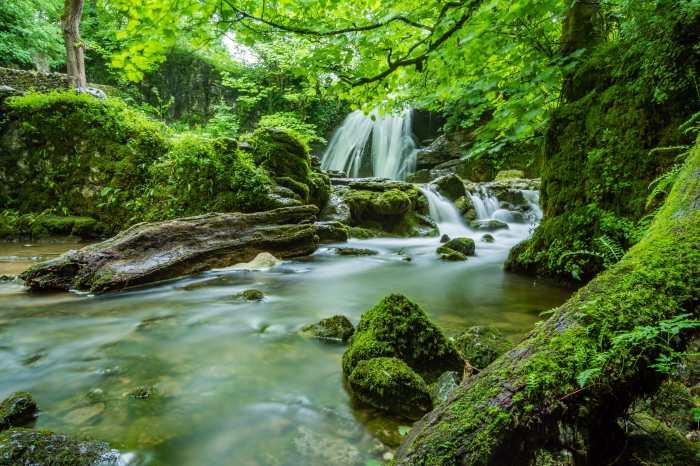 rushin stream wih water falls image